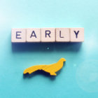 early bird tax filing benefits